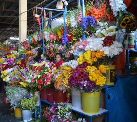 bargain for: Cusco, Peru, 17 September 2015 - Flower vendor waiting for business at San Pedro Market. It is customary to bargain while making purchases.