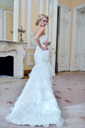 Beauty bride in bridal gown with lace veil indoors.