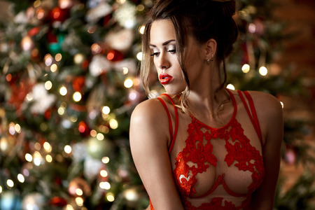 Beautiful brunette sexy Santa Clause in elegant bra Stock Photo