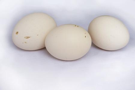loess: Three eggs Stock Photo