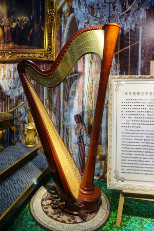 Harp displayed in the house