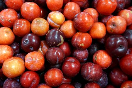 A heap of plum