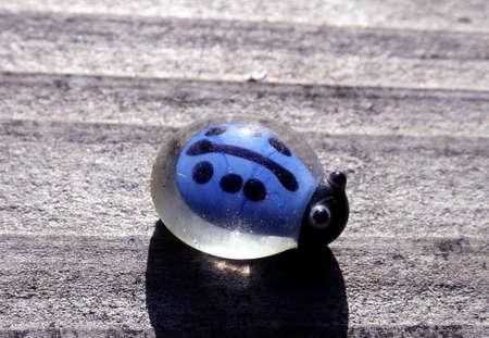 Little Blue Ladybug
