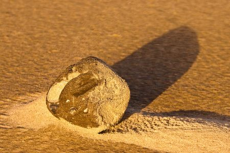 ball lump: Wind blowing through the sand on the beach