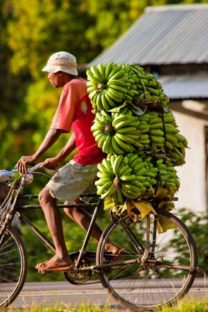 African man traveling with a bunch of bananas on a bike