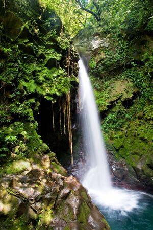 rio amazonas: Bella cascada en la selva tropical