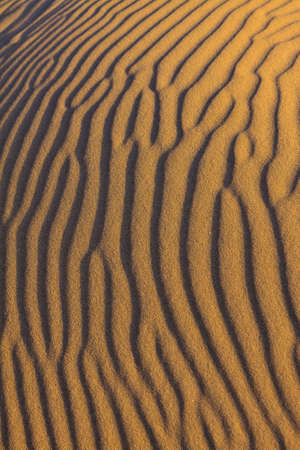 ripples in the sand in close up photo