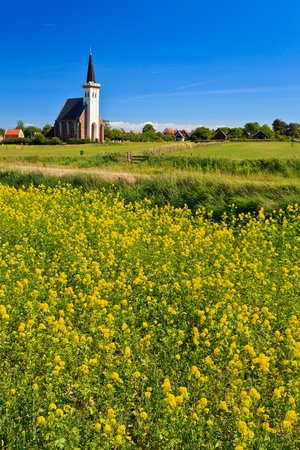 Church and flower field on a sunny day in spring Stock Photo