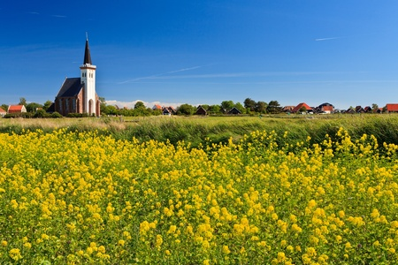 Church and flower field on a sunny day in spring Stock Photo - 10255953