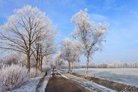 Small street in a cold white winter landscape photo