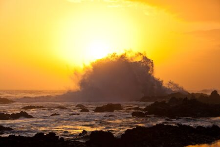 High wave breaking on the rocks at sunset Stock Photo - 11409122