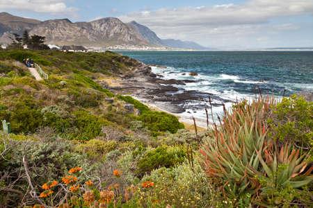 beautifu: Beautifu rocky coastline with mountains in South Africa
