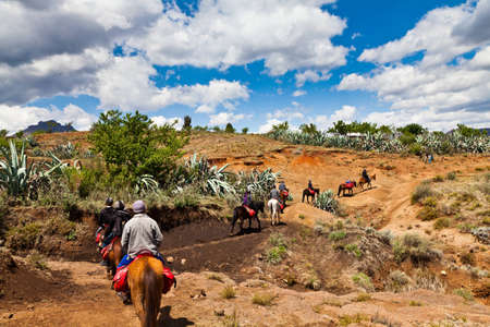 Pony trail adventure in the mountains of africa photo