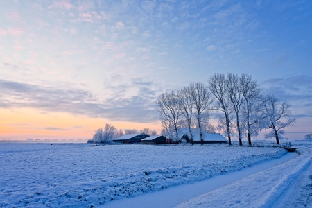Farm in a cold white winter landscape photo