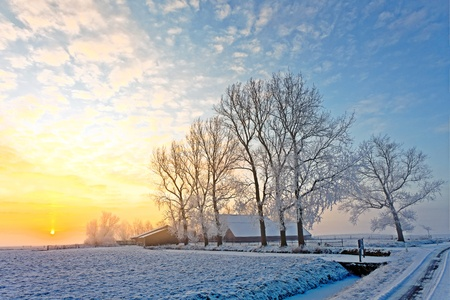 Cold white winter landscape at sunset in Holland