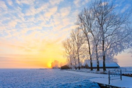 Cold white winter landscape at sunset in Holland photo