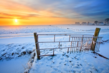Grassland and fence in winter at sunset photo