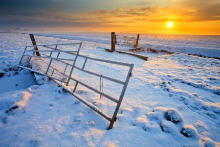 Grassland and fence in winter at sunset
