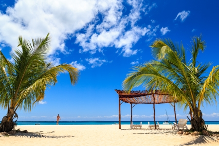 Palm tree and beds  on a tropical white beach