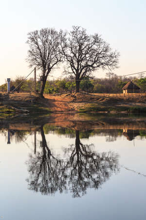 other side of: Trees on the other side of the river in Africa Stock Photo