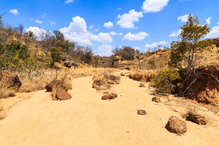 riverbed: Dry riverbed landscape on a warm sunny day in Africa Stock Photo