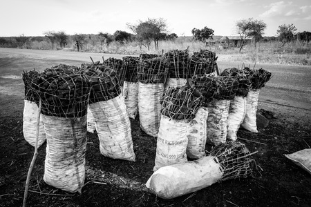 Bag of charcoal along the road in africa, Tanzania photo
