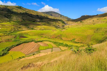 Landscape with rice fields in central Madagascar on a sunny day Stock Photo