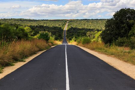 hiway: Forest with road at National park Zombitse in south west Madagascar Stock Photo