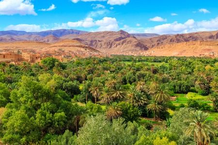 Landscape of a typical moroccan berber village made of red stone with oasis in the valley