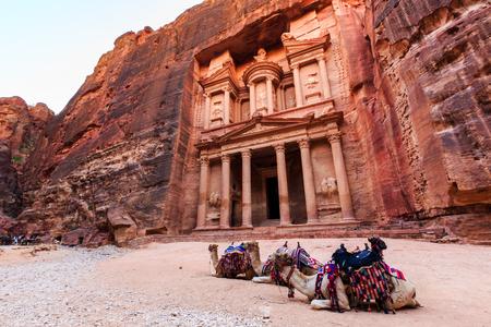 Wielbłądy przed skarbcem w Petrze oświetlone słońcem starożytne miasto Al Khazneh w Jordanii Zdjęcie Seryjne