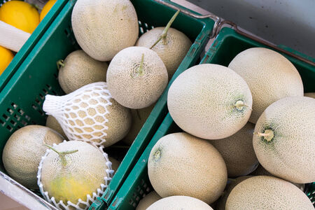 Cantaloupe melons in the market