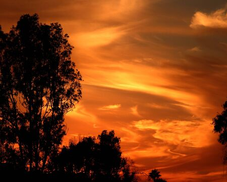 Fiery Sunset Фото со стока