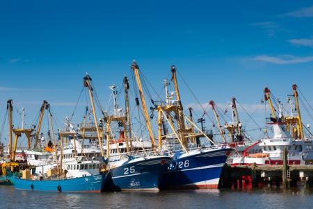 redes de pesca: flota de barcos de pesca en el puerto Editorial