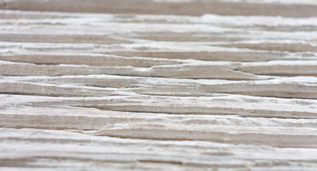 old macro: Macro old wood texture background Stock Photo