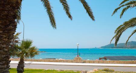 dorada: Mediterranean Sea and palm trees, Summer in Spain, Costa Dorada