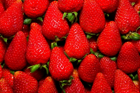 Organic fresh strawberries photo
