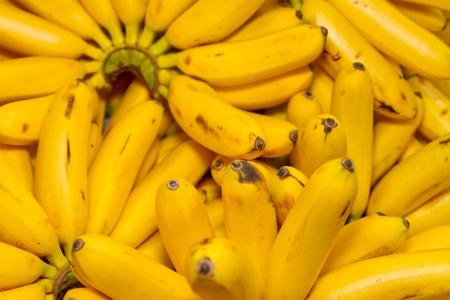 Bunch Of Organic Ripe Bananas photo