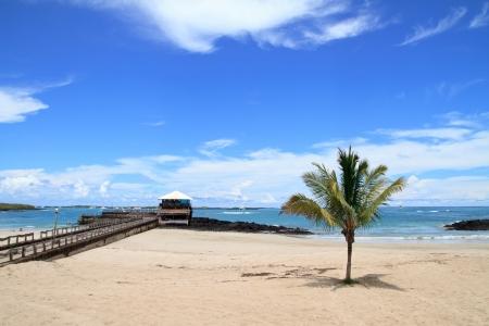 playa de las Islas Galápagos