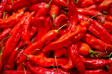 red chili peppers, closeup view photo