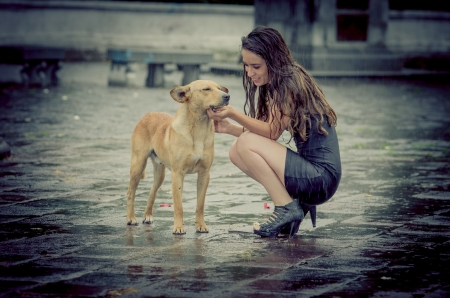 dog walking: Girl comforting a with dog under rain