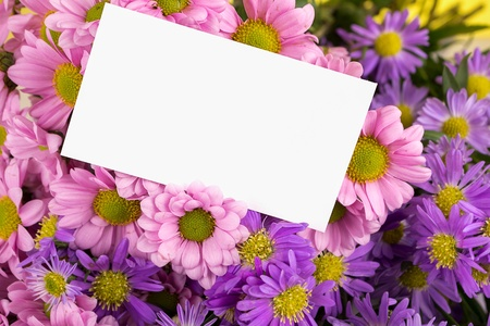 mother day greeting, blank photo