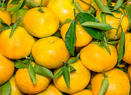 Tangerines with leaves in the market photo