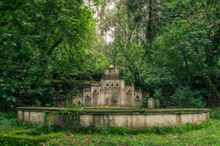 Old fountain in the jungle covered with plants photo
