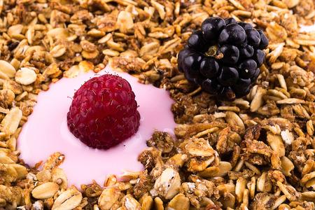 cobnut: yogurt with muesli and berries Stock Photo