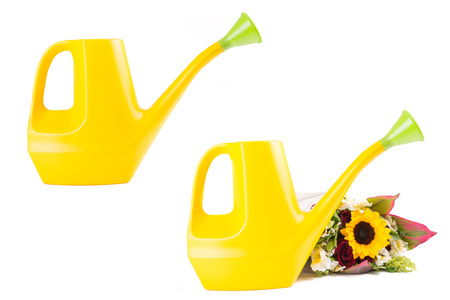 yellow watering can set and sunflowers photo