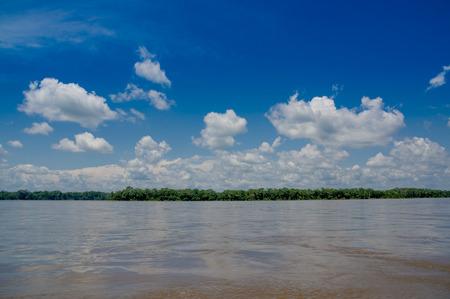Tropical Rainforest  at Amazonas, South America photo