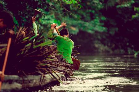 pahang: Canoes in the Yasuni national park Ecuador, carring straw plant