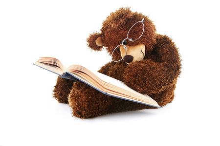 Image of a stuffed bear reading a book isolated on white