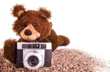 귀여운 곰 모래에 카메라와 함께입니다.