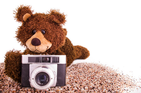 A cute teddy bear is with a camera on the sand